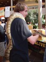 snakes alive nooner photo