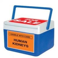 Professor Argues for Legalized Kidney Markets