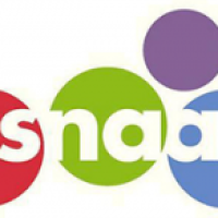 Arts alumni—SNAAP To It!