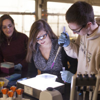 Chemistry ranked as one of the nation's best undergrad programs